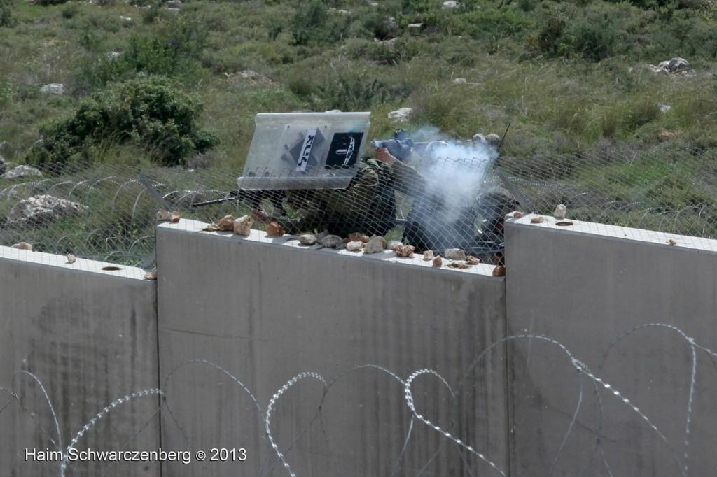 Bil'in 08/03/2013 | IMG_3131