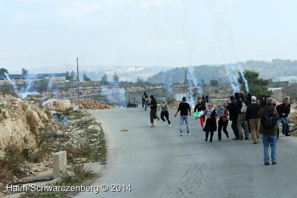 Nabi Saleh 17/01/2014 | IMG_2993