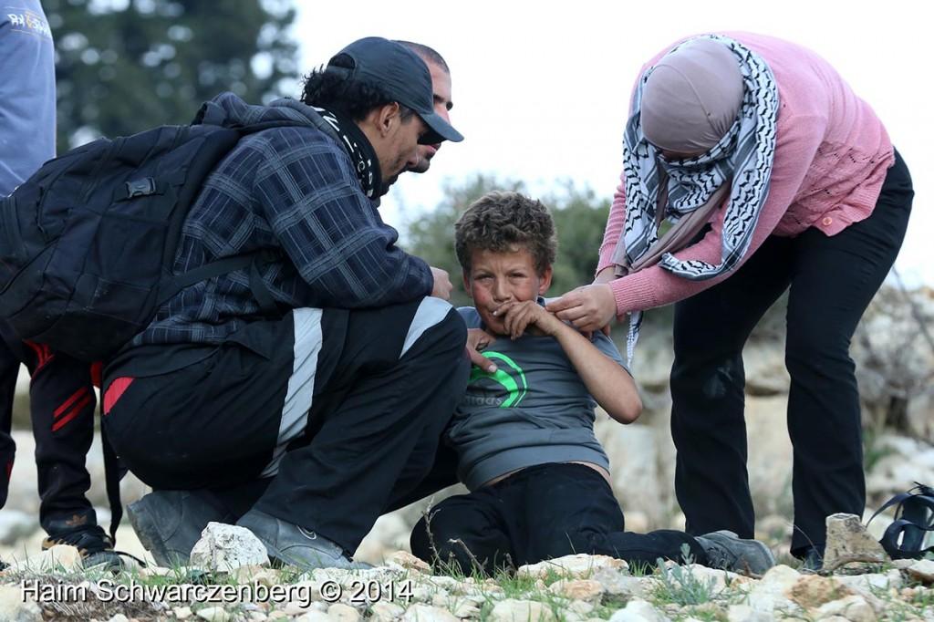 Nabi Saleh 17/01/2014 | IMG_3048