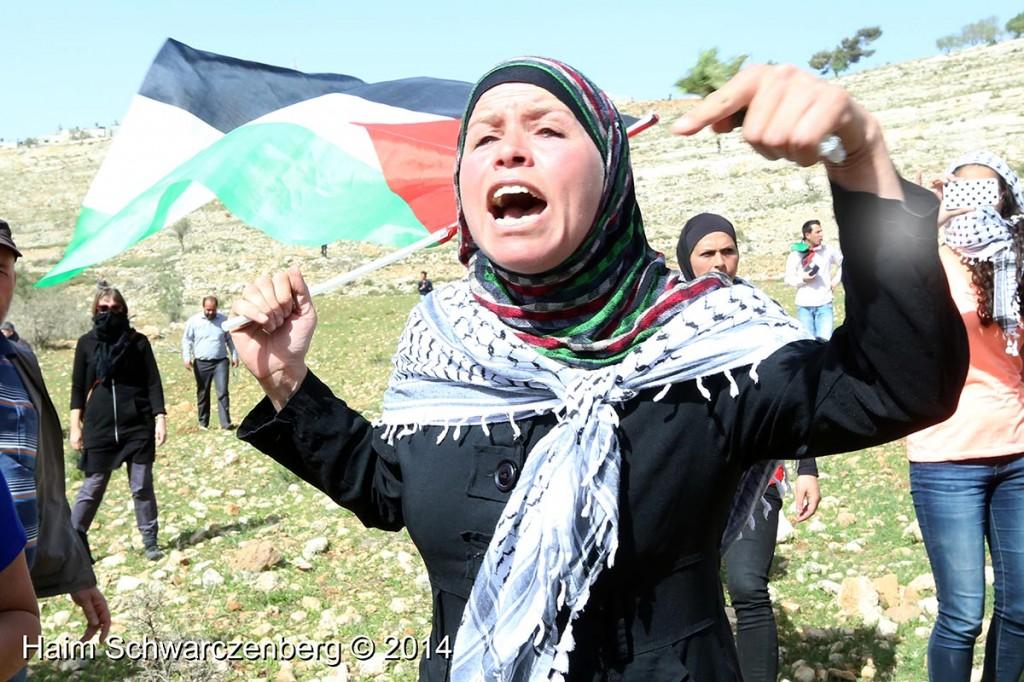 Nabi Saleh 07/03/2014   IMG_5922