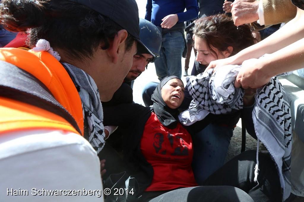 Nabi Saleh 07/03/2014   IMG_6050