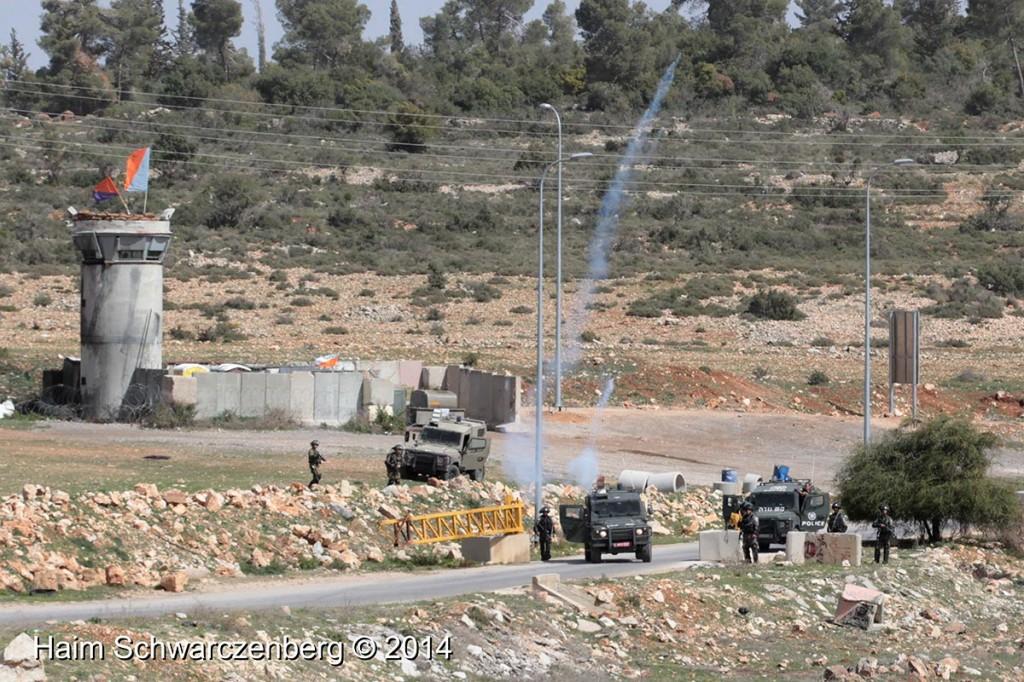 Nabi Saleh 07/03/2014   IMG_7845