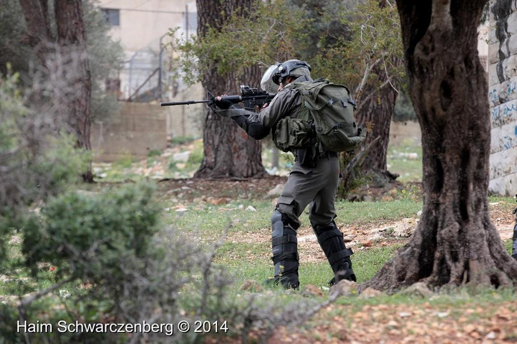 Nabi Saleh 14/03/2014 | IMG_8398