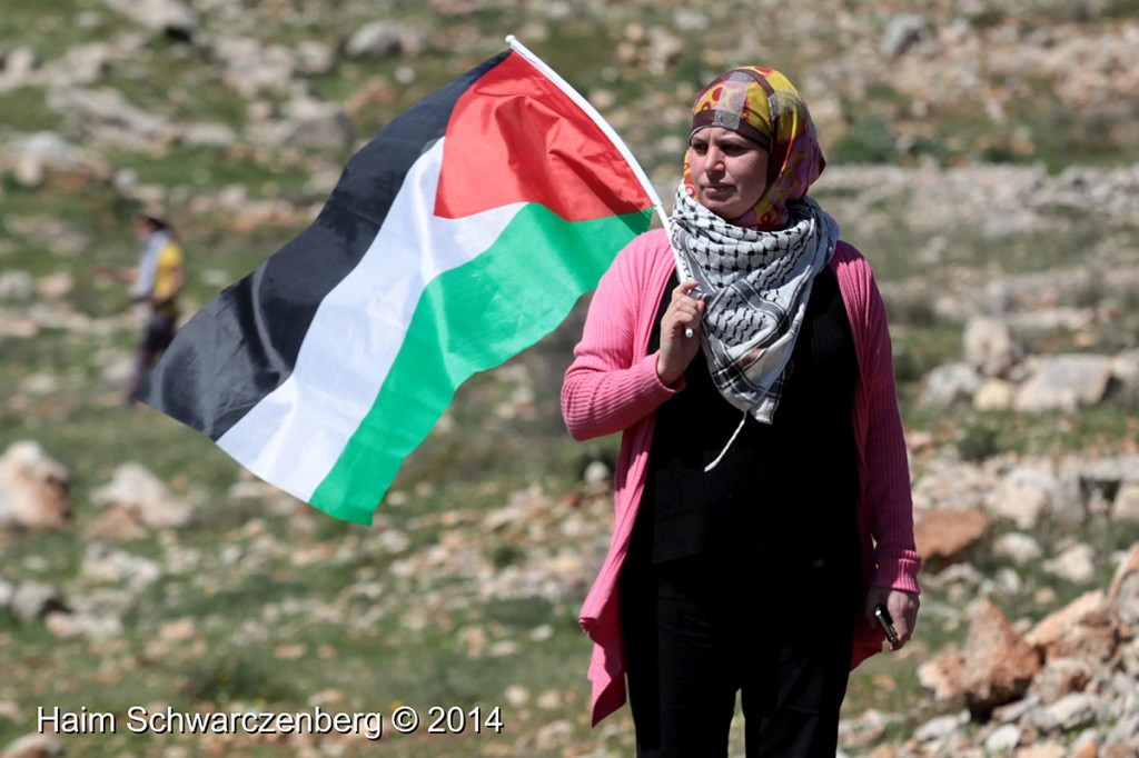 The Arrest of Manal Tamimi