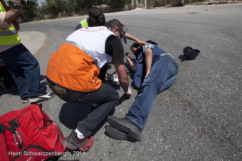 Nabi Saleh 25/04/2014 | IMG_0014