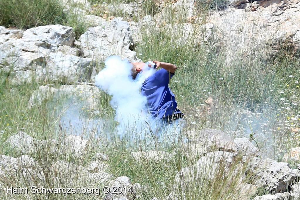 Nabi Saleh 18/04/2014 | IMG_0015