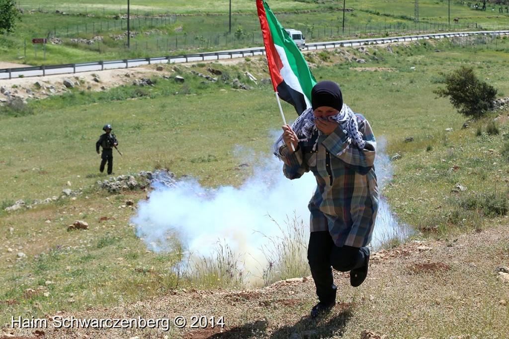 Nabi Saleh 18/04/2014 | IMG_0109