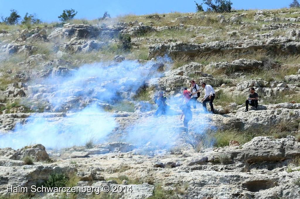 Nabi Saleh 18/04/2014 | IMG_0190