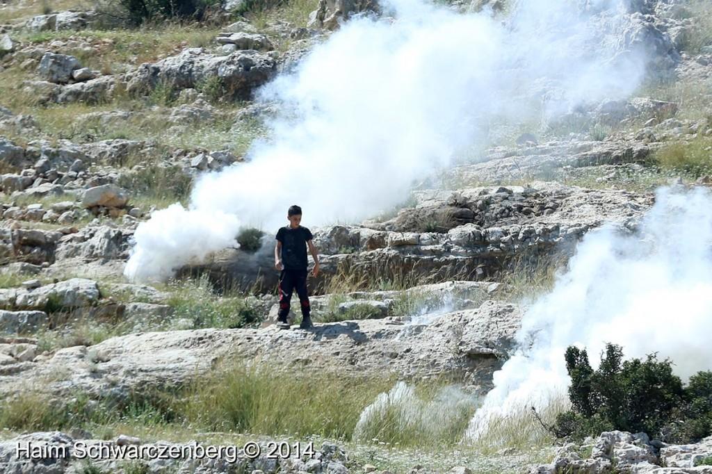 Nabi Saleh 18/04/2014 | IMG_0219