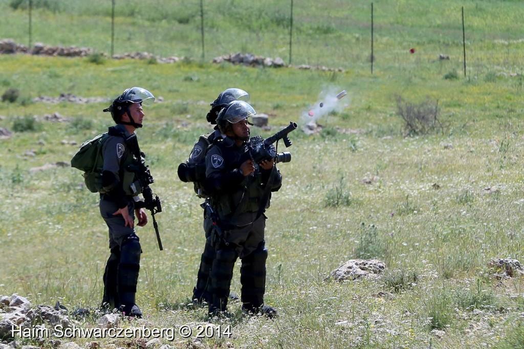 Nabi Saleh 18/04/2014 | IMG_0226