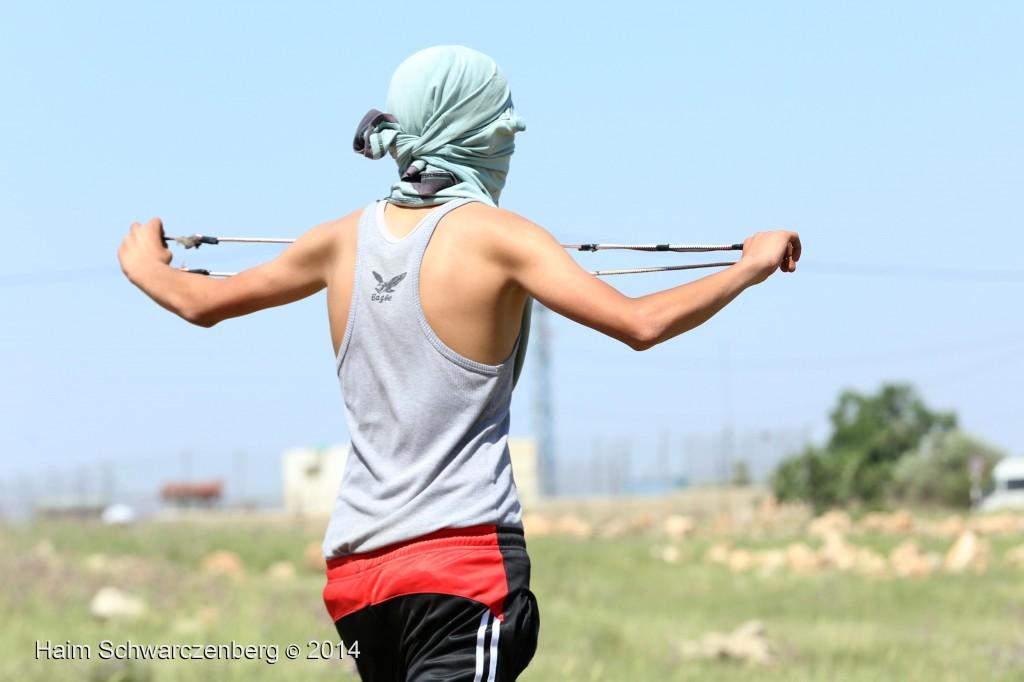 Nabi Saleh 25/04/2014 | IMG_0694