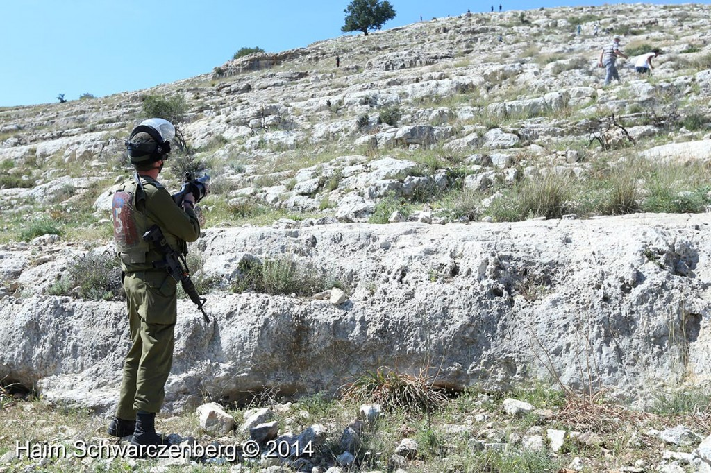 Nabi Saleh 11/04/2014 | IMG_9709