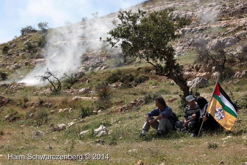 Nabi Saleh 11/04/2014 | IMG_9754