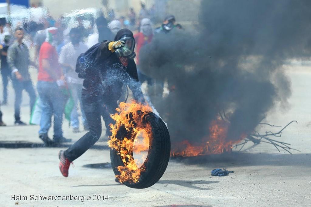 Ofer Military Prison, Bitunia 16/05/2014 | IMG_1803