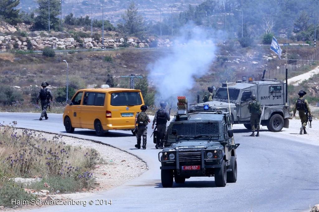 Nabi Saleh 27/06/2014   IMG_8122