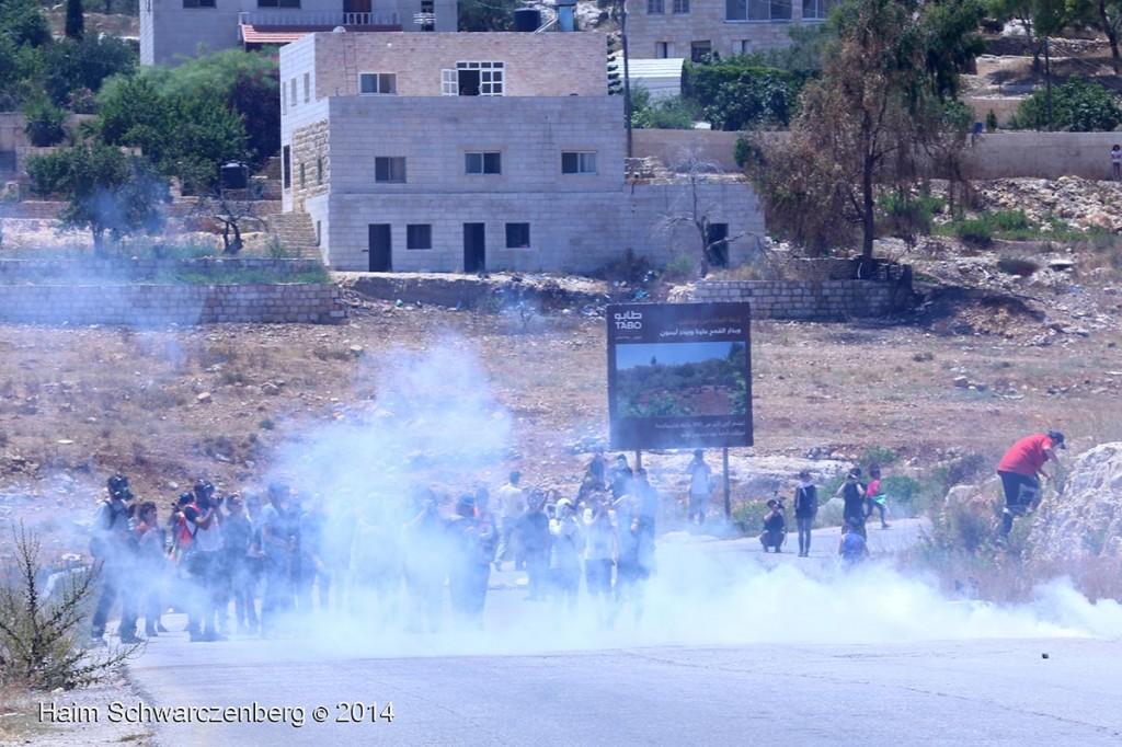 NNabi Saleh 27/06/2014   IMG_8138