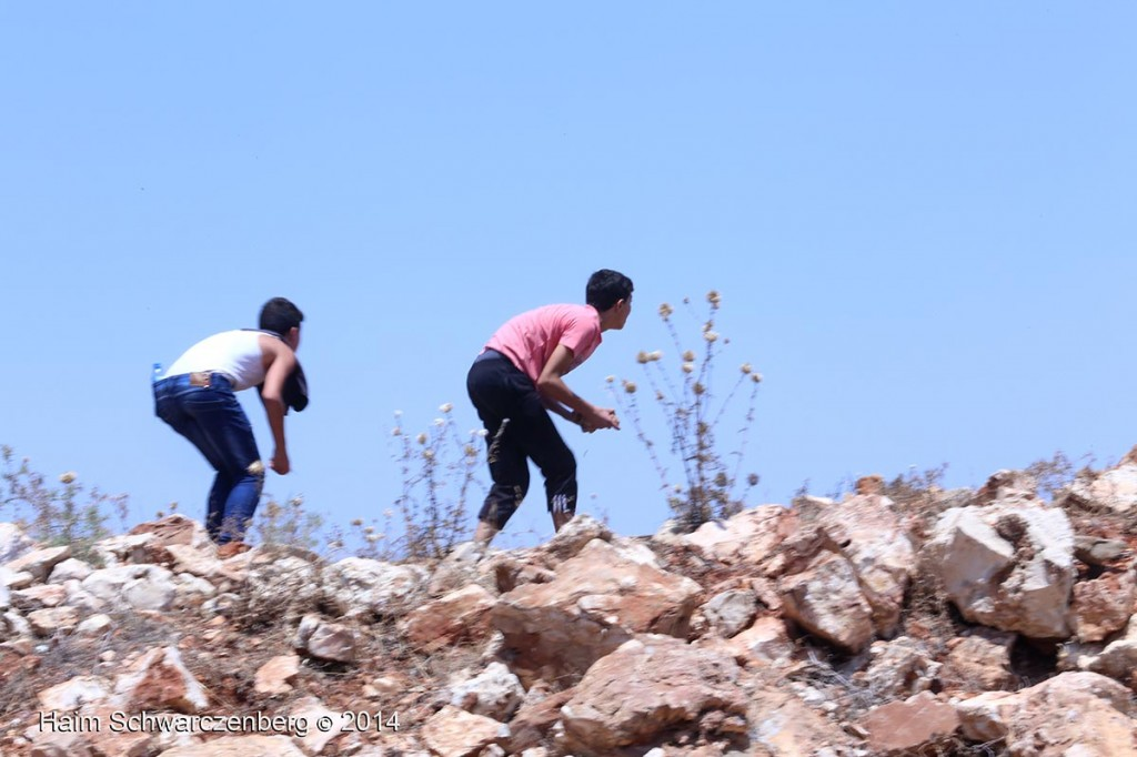 Nabi Saleh 27/06/2014   IMG_8154