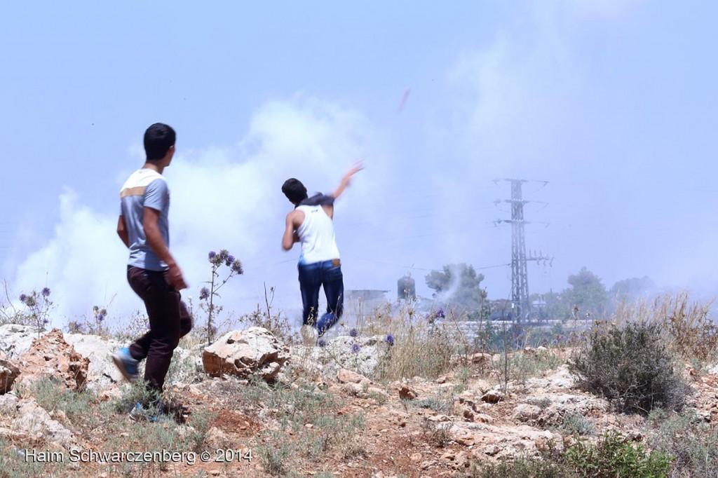 NNabi Saleh 27/06/2014   IMG_8164