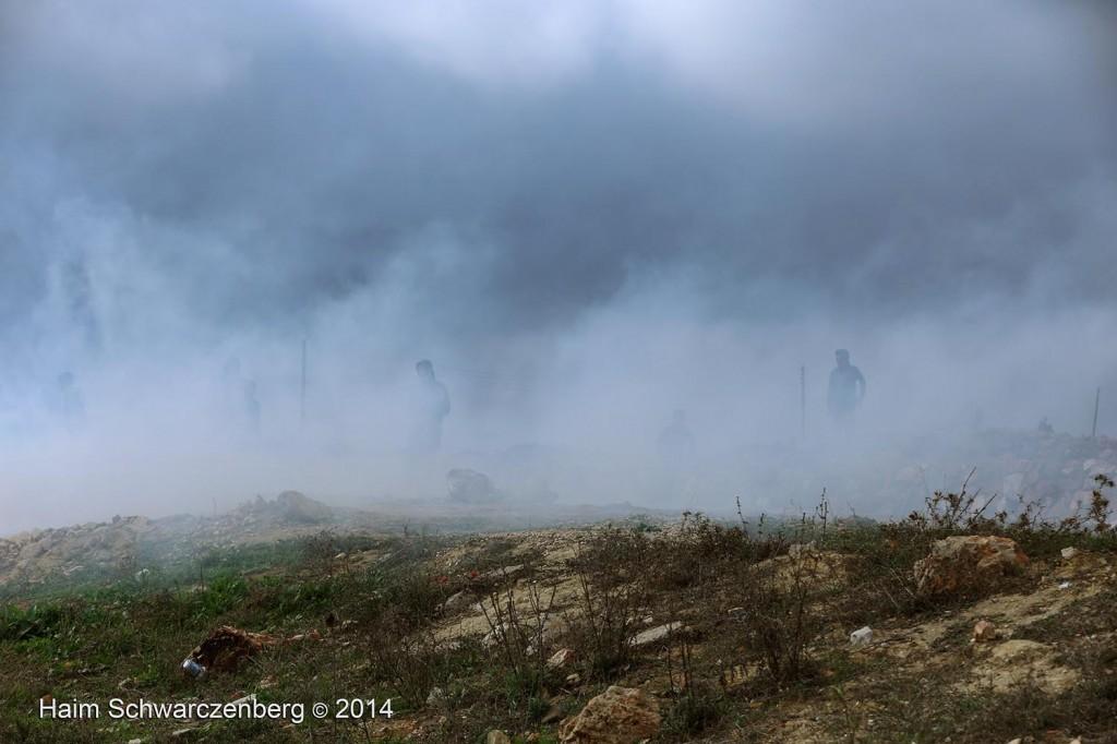 Nabi Saleh 21/11/2014 | IMG_0970