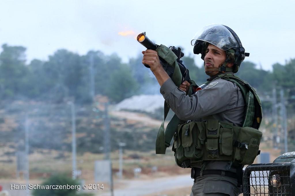 Nabi Saleh 21/11/2014 | IMG_1085
