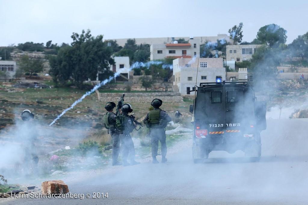 Nabi Saleh 21/11/2014 | IMG_1186