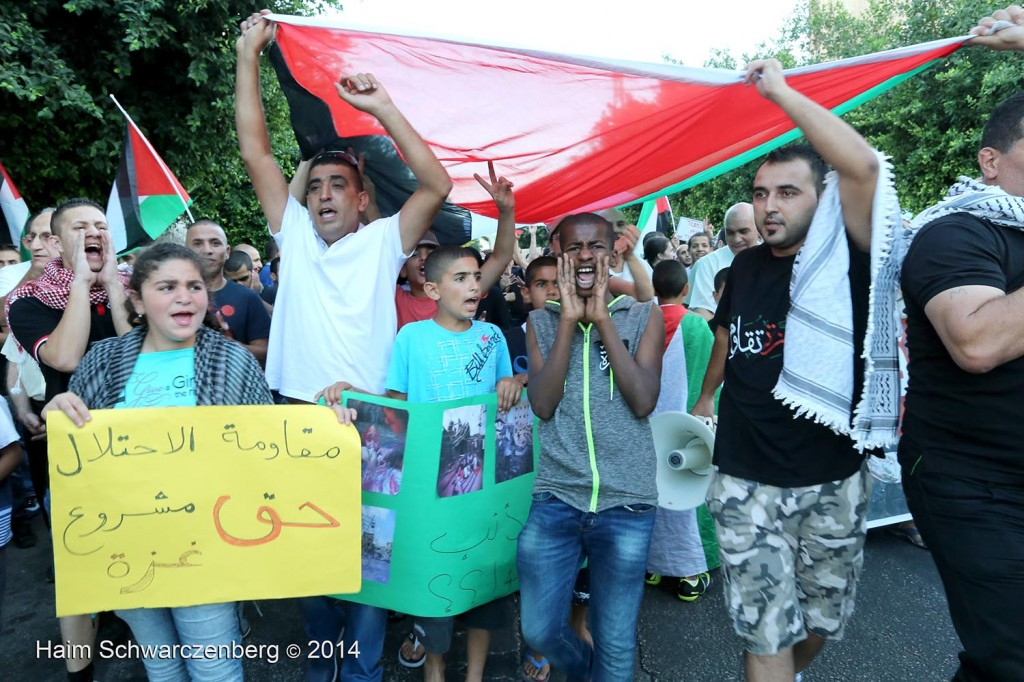 Rally against the ongoing massacre in Gaza, al-Lydd | IMG_3633