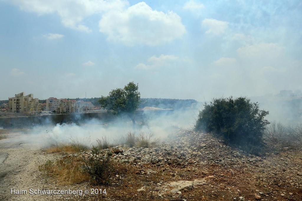 Bil'in 13/06/2014 | IMG_4486