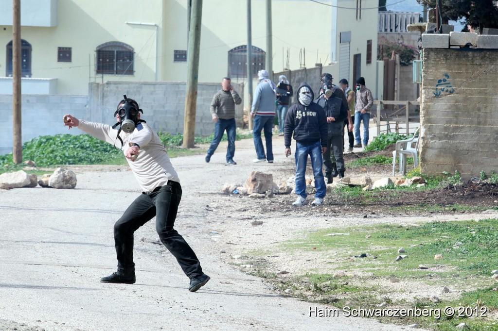 Kufr Qaddum 03/02/2012 | IMG_6380