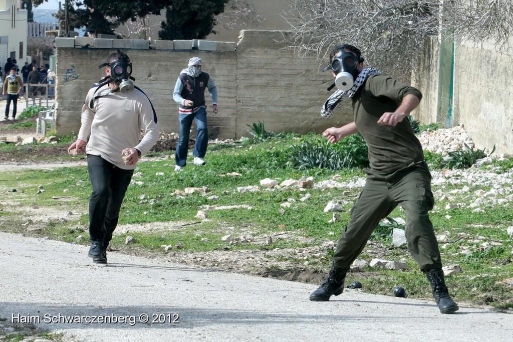 Kufr Qaddum 03/02/2012 | IMG_6413