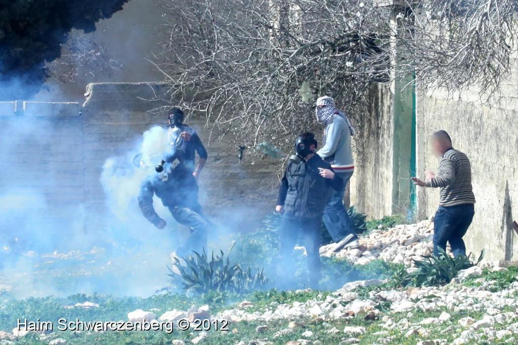 Kufr Qaddum 03/02/2012 | IMG_6427