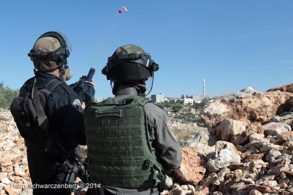 Bil'in 07/11/2014 | IMG_8244