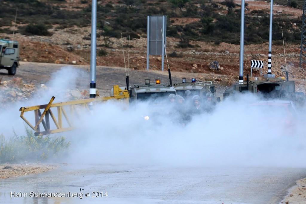 Nabi Saleh 31/10/2014 | IMG_8544
