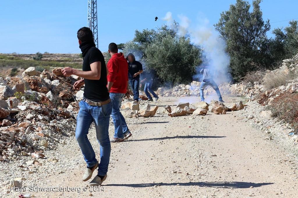 Bil'in 07/11/2014 | IMG_8959