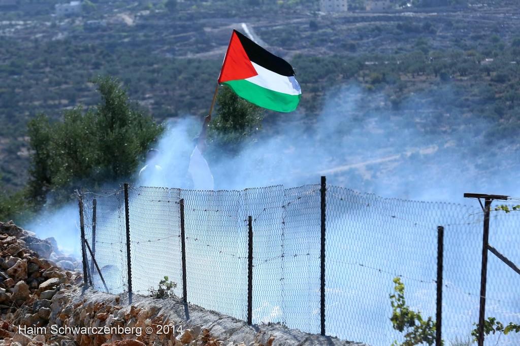Bil'in 07/11/2014 | IMG_8974