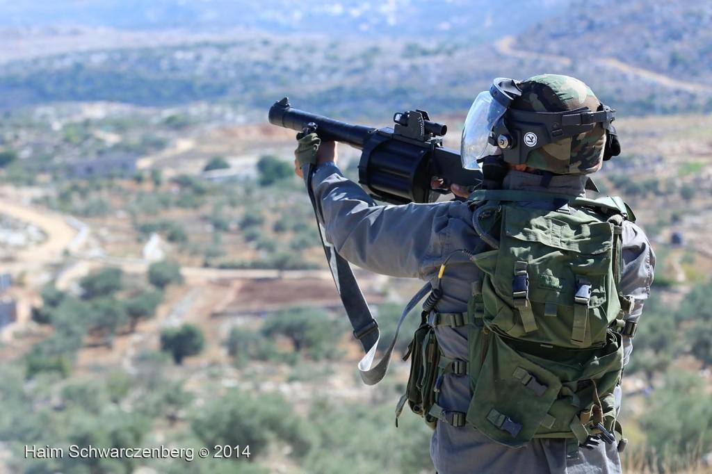 Bil'in 07/11/2014 | IMG_9038