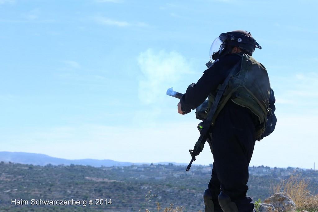 Bil'in 07/11/2014 | IMG_9111