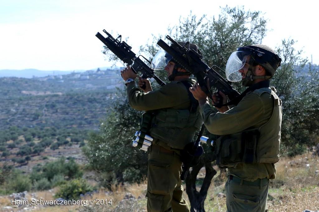 Bil'in 07/11/2014 | IMG_9191