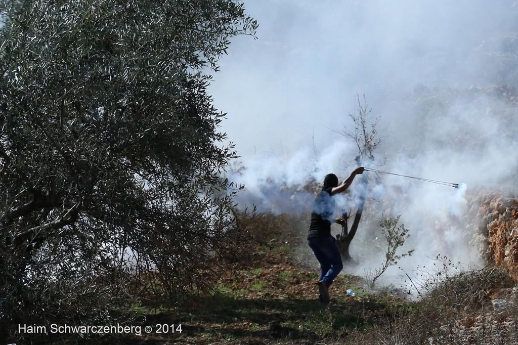 Bil'in 07/11/2014 | IMG_9307