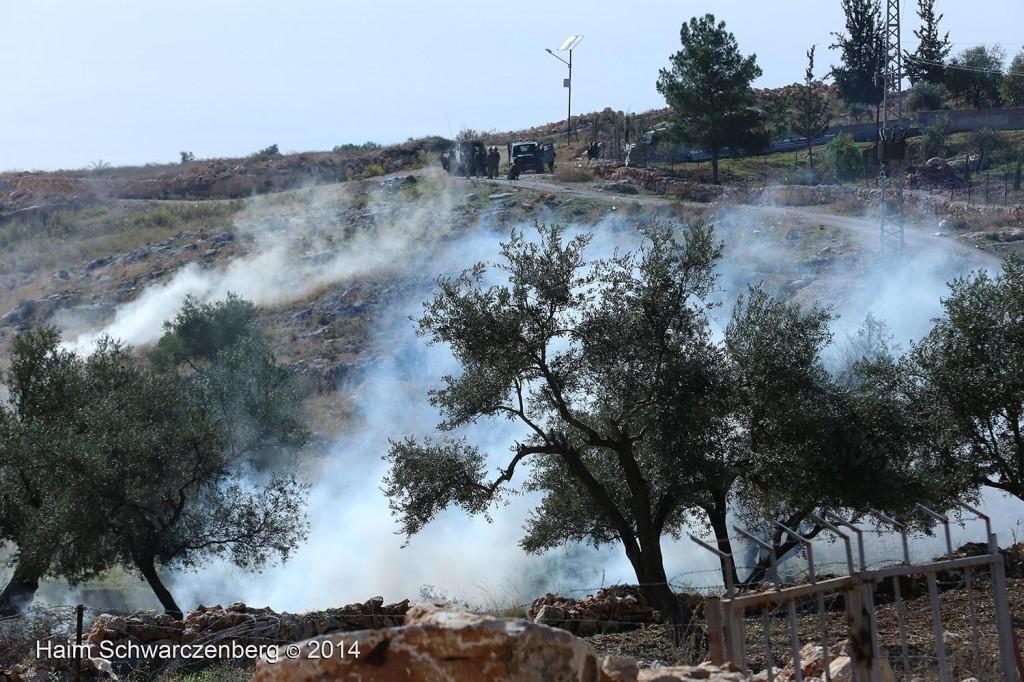 Bil'in 07/11/2014 | IMG_9323