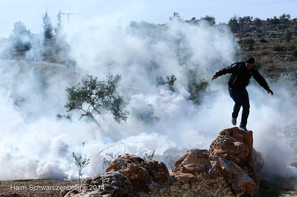 Bil'in 07/11/2014 | IMG_9340