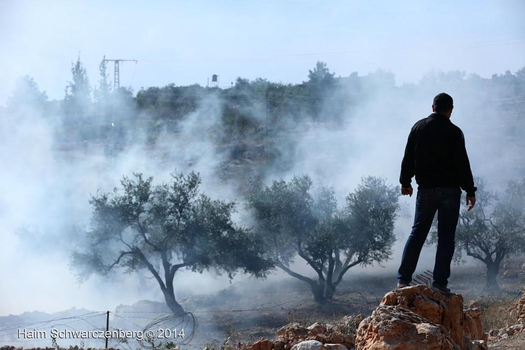 Bil'in 07/11/2014