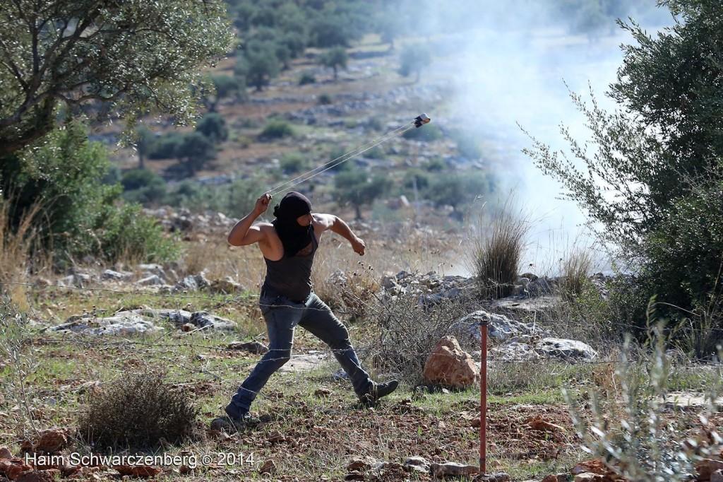 Bil'in 07/11/2014 | IMG_9354
