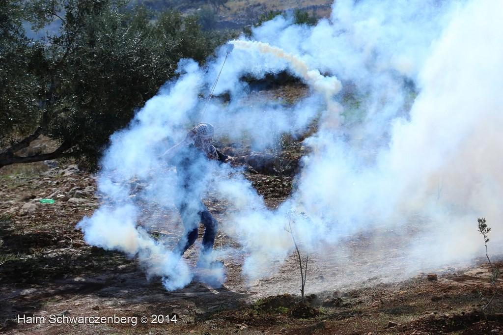 Bil'in 07/11/2014 | IMG_9384