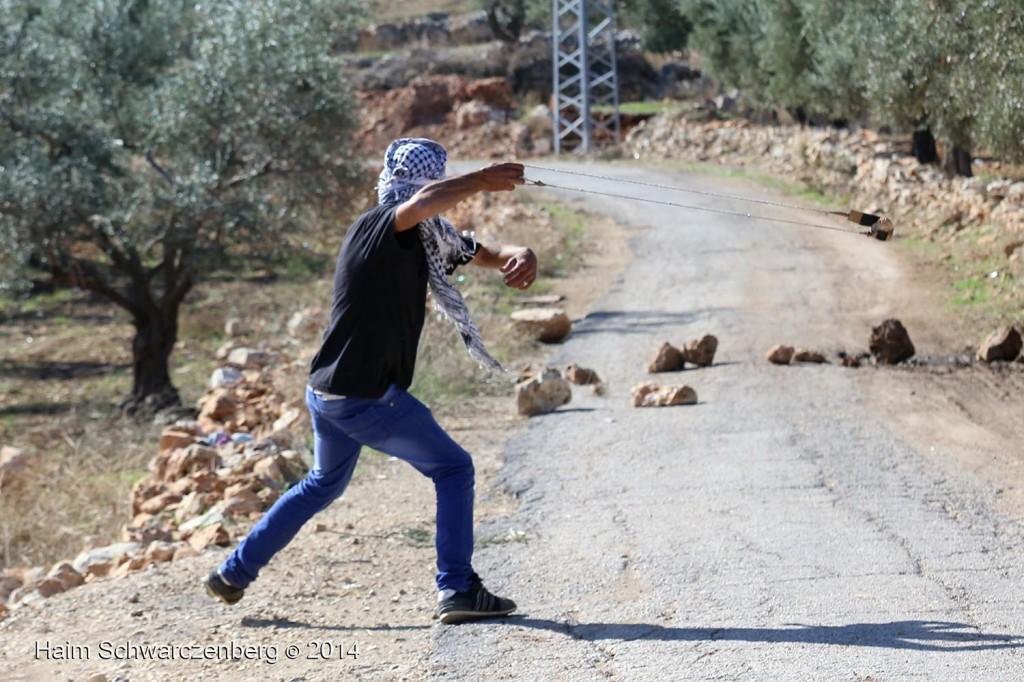 Bil'in 07/11/2014 | IMG_9411
