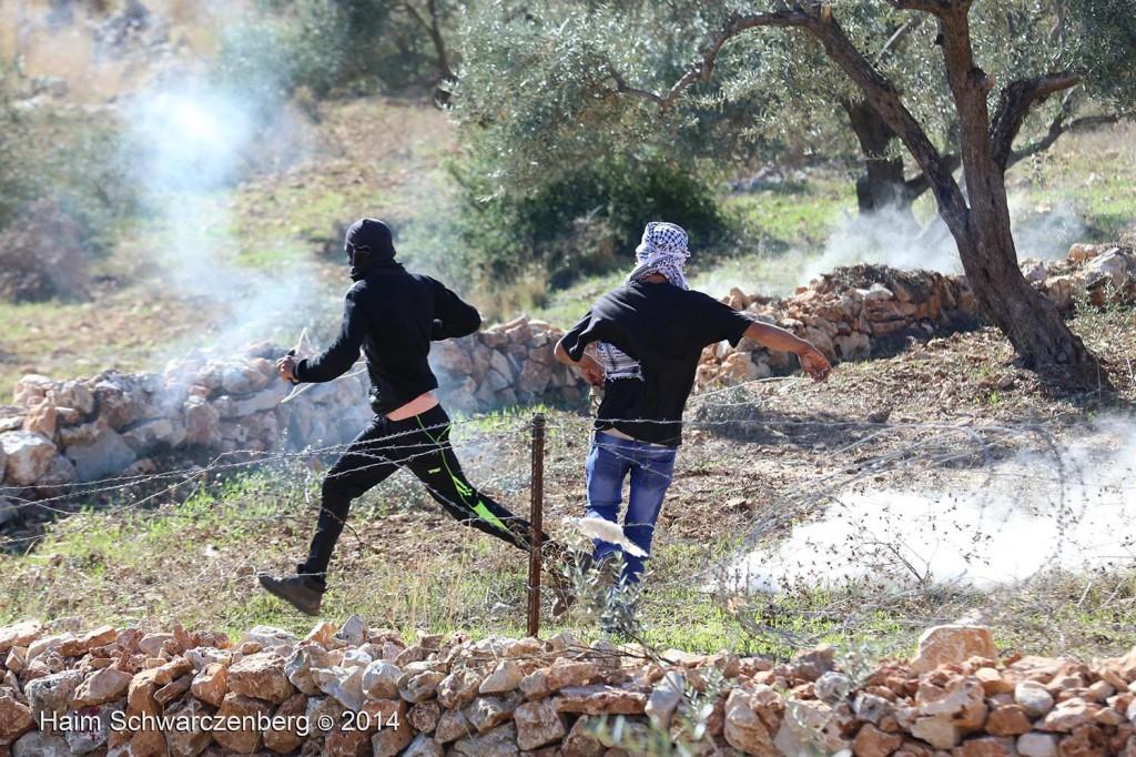 Bil'in 07/11/2014 | IMG_9451
