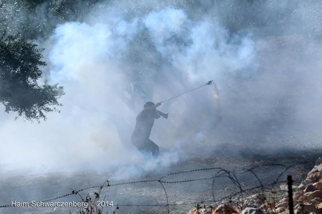 Bil'in 07/11/2014 | IMG_9456