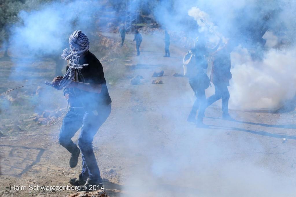Bil'in 07/11/2014 | IMG_9485