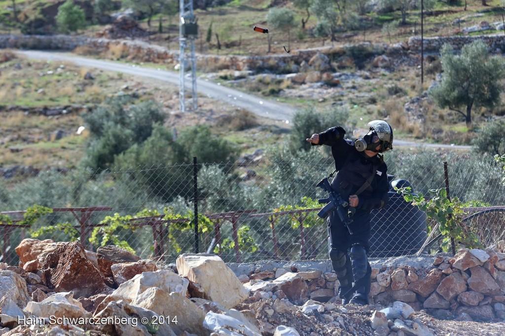 Bil'in 07/11/2014 | IMG_9525