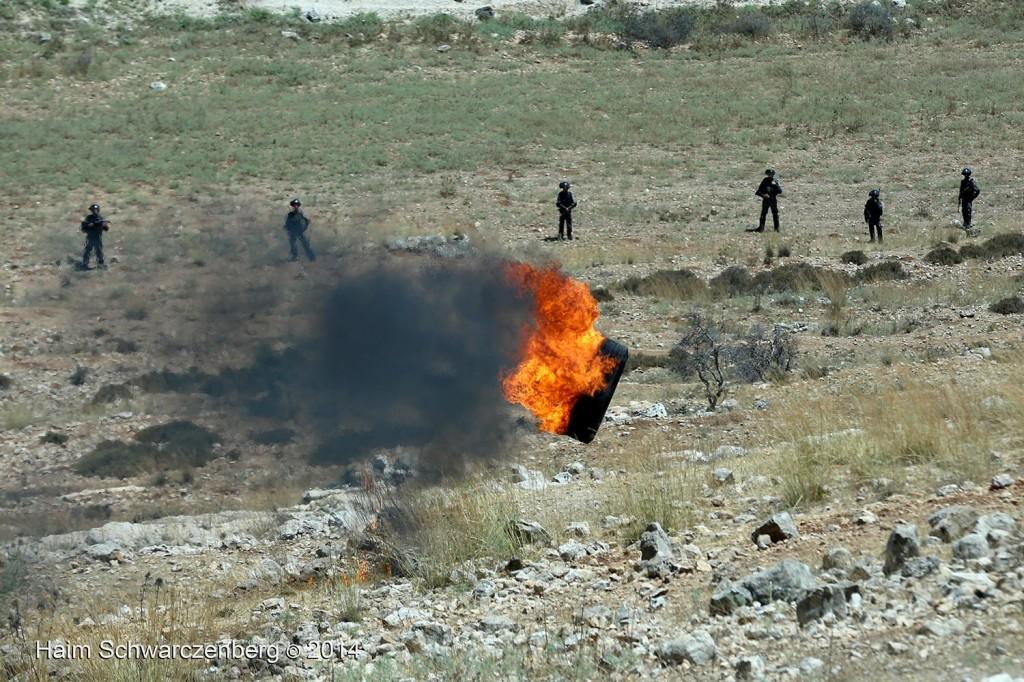 Nabi Saleh 11/07/2014 | IMG_9689