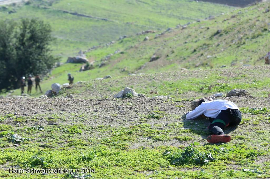 Nabi Saleh 05/12/2014 | IMG_2589
